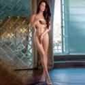 Escort Model Steffany Frankfurt FFM Sex Callgirl Escortservice