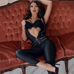 Escort Model Velvet 2 Frankfurt FFM Sex Call Girl Escort-Service